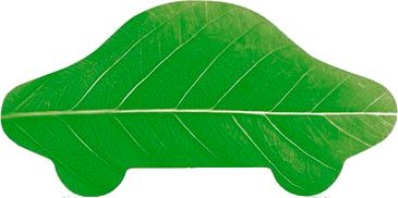 зеленая карта у парка победы